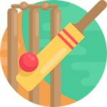 005-cricket
